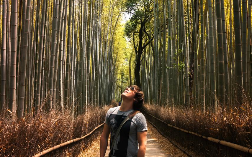 Malte Japan tripdelta