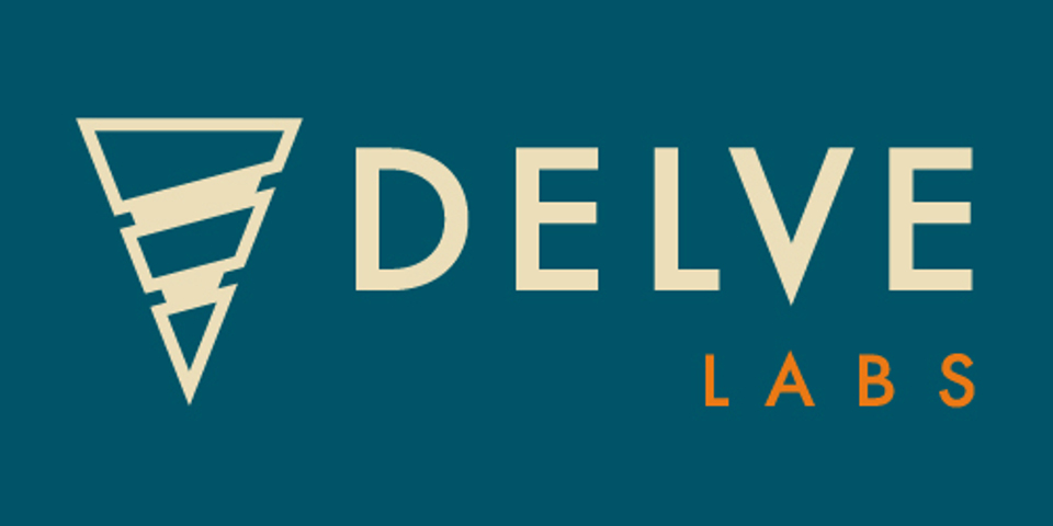 Delve Labs raises $1.5 million seed round to help companies fight cyber attacks with AI platform