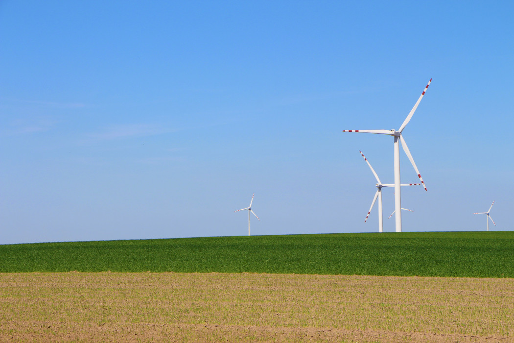 Wind turbines in an open field